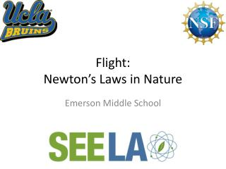 Flight: Newton's Laws in Nature