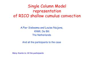 Single Column Model  representation of RICO shallow cumulus convection