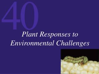 Plant Responses to Environmental Challenges