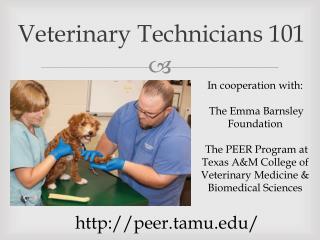 Veterinary Technicians 101