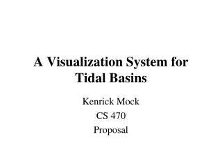 A Visualization System for Tidal Basins