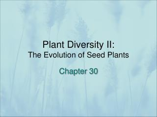 Plant Diversity II:   The Evolution of Seed Plants