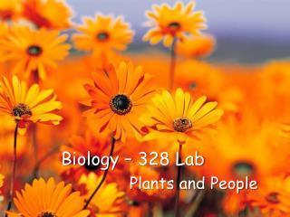 Biology – 328 Lab