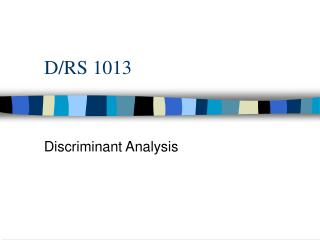 D/RS 1013