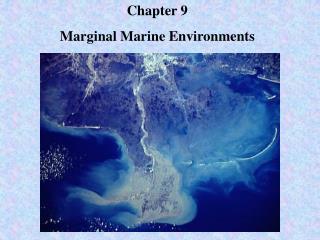 Chapter 9 Marginal Marine Environments