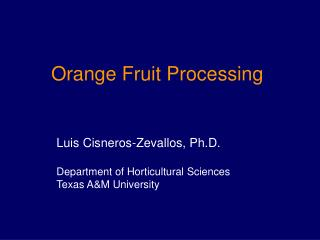 Orange Fruit Processing