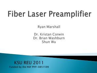 Fiber Laser Preamplifier
