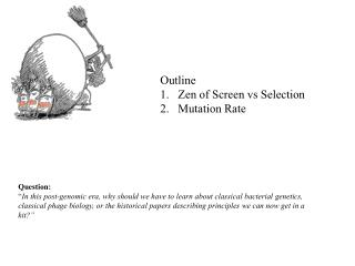 Outline Zen of Screen vs Selection Mutation Rate