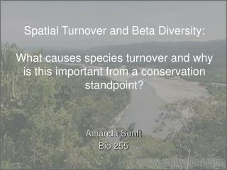 Spatial Turnover and Beta Diversity: What causes species turnover and why is this important from a conservation standpo