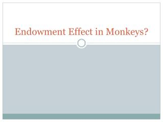 Endowment Effect in Monkeys?