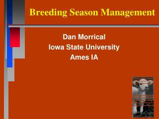 Breeding Season Management