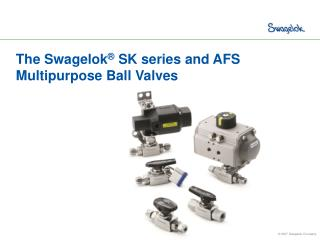 The Swagelok ®  SK series and AFS  Multipurpose Ball Valves