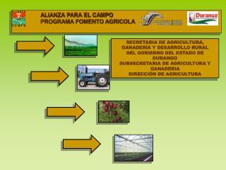 ALIANZA PARA EL CAMPO                  PROGRAMA FOMENTO AGRICOLA