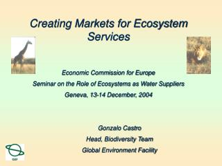 Creating Markets for Ecosystem Services Economic Commission for Europe Seminar on the Role of Ecosystems as Water Suppl