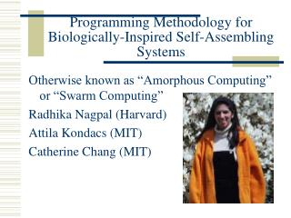 Programming Methodology for Biologically-Inspired Self-Assembling Systems