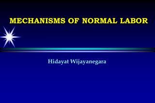 Hidayat Wijayanegara