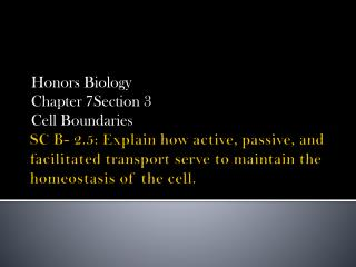 SC B- 2.5: Explain how active, passive, and facilitated transport serve to maintain the homeostasis of the cell.