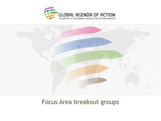 Focus Area breakout groups