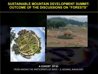 "SUSTAINABLE MOUNTAIN DEVELOPMENT SUMMIT: OUTCOME OF THE DISCUSSIONS ON ""FORESTS"""