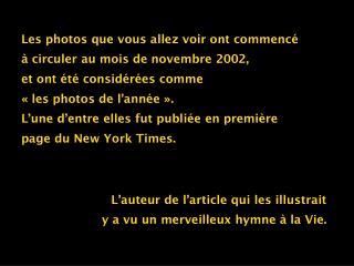 Les photos que vous allez voir ont commencé à circuler au mois de novembre 2002, et ont été considérées comme «les pho