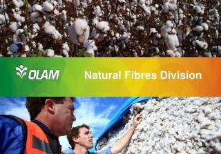 Natural  Fibres Division
