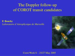 The Doppler follow-up  of COROT transit candidates