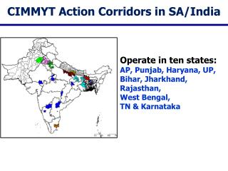 CIMMYT Action Corridors in  SA/India