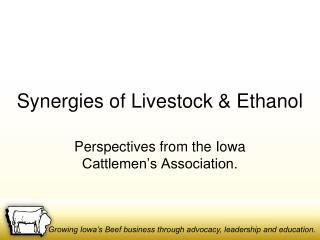 Synergies of Livestock & Ethanol