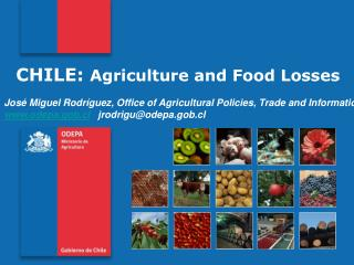 CHILE:  Agriculture  and  Food Losses José Miguel Rodríguez,  Office of Agricultural Policies, Trade and Information
