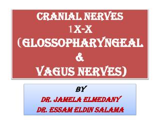 Cranial Nerves 1 X-X ( Glossopharyngeal & Vagus Nerves)