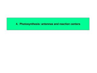 4.  Photosynthesis: antennas and reaction centers