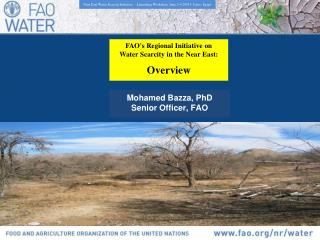 FAO's Regional Initiative on Water Scarcity in the Near East: Overview