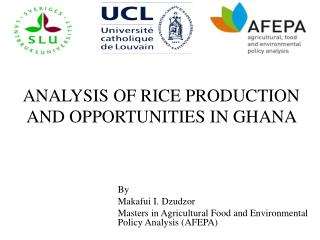 ANALYSIS OF RICE PRODUCTION AND OPPORTUNITIES IN GHANA