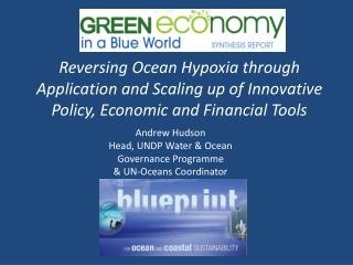 Reversing Ocean Hypoxia through Application and Scaling up of Innovative Policy, Economic and Financial Tools