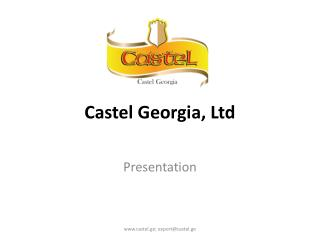 Castel Georgia, Ltd