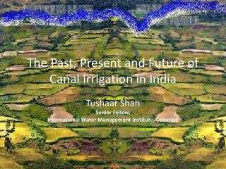 The Past, Present and Future of Canal Irrigation in India