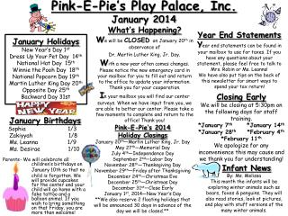 Pink-E-Pie's Play Palace, Inc.  January 2014