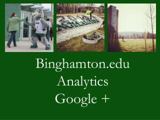 Binghamton.edu  Analytics  Google +