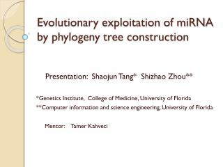 Evolutionary exploitation of miRNA by phylogeny tree construction