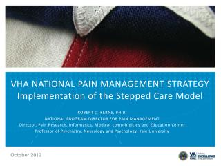 VHA NATIONAL PAIN MANAGEMENT STRATEGY Implementation of the Stepped Care Model