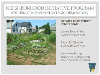 Neighborhood initiative program best practices for strategic demolition