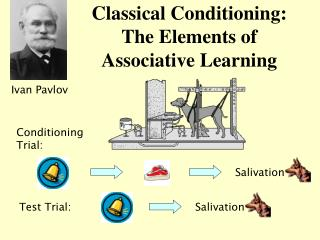 Classical Conditioning: The Elements of Associative Learning