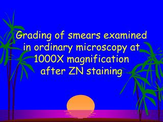 Grading of smears examined in ordinary microscopy at 1000X magnification after ZN staining
