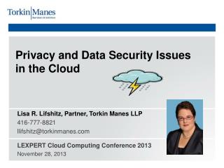 Privacy and Data Security Issues  in the Cloud