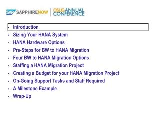 Introduction Sizing Your HANA System HANA Hardware Options Pre-Steps for BW to HANA Migration  Four BW to HANA Migratio