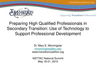 Preparing High Qualified Professionals in Secondary Transition: Use of Technology to Support Professional Development