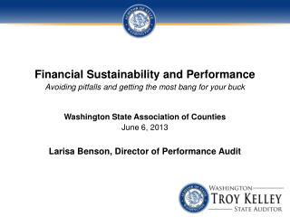 Why the State Auditor's Office?