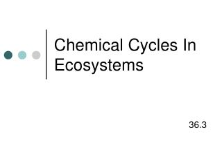 Chemical Cycles In Ecosystems