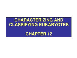Characterizing and Classifying Eukaryotes Chapter 12