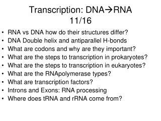Transcription: DNA RNA 11/16